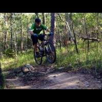 Nerang State Forest
